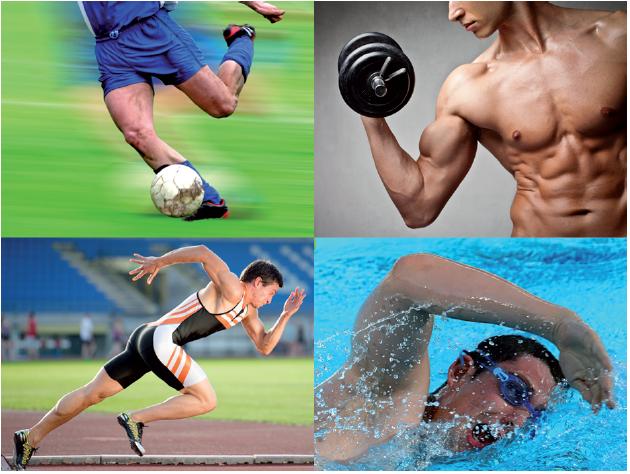 Progeo | Nutrigeo - Dieta a menù giornaliero Sport