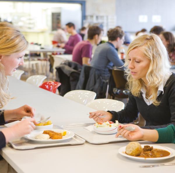 Progeo   Convivia - software per la ristorazione collettiva Aggiornamento